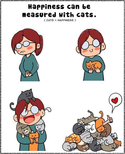 la felicità si misura in gatti