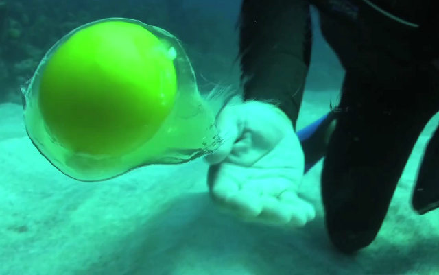 uovo subacqueo
