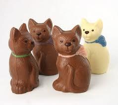 gatti al cioccolato